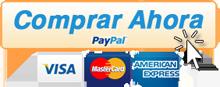 pago-paypal2